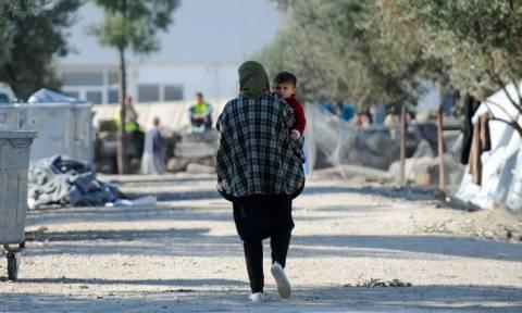 Μυτιλήνη: «Μαυροβούνι», ένα λάδι από τους πρόσφυγες, για τους πρόσφυγες