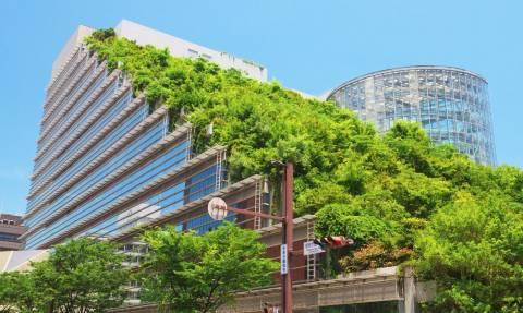 Έρευνα Χάρβαρντ: Τα πράσινα κτήρια «διώχνουν» πονοκέφαλο και αϋπνίες!