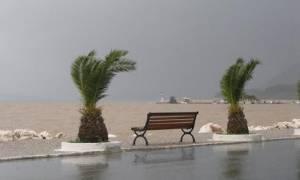 Κακοκαιρία: Ζημιές από τους ισχυρούς ανέμους στην Πάτρα - Κλειστό το πορθμείο Ρίου-Αντιρρίου