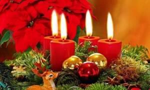 Αλεξανδρινό, το χριστουγεννιάτικο - Είναι ή όχι επικίνδυνο για την υγεία μας;