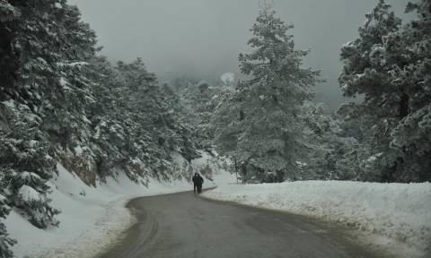 Χιονιάς σαρώνει τη χώρα - Στα «λευκά» και η Αττική - Εγκλωβισμένοι οδηγοί στην Κρήτη