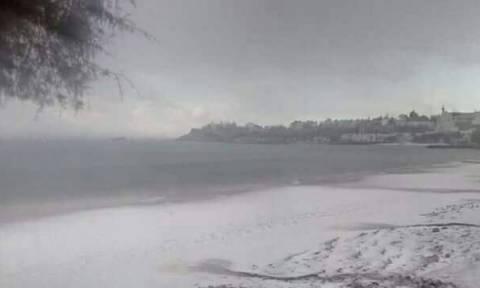 Απίστευτες εικόνες στην Κρήτη: Το χιόνι έφτασε μέχρι τη θάλασσα (photos)
