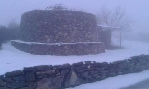 Κακοκαιρία: Αποκλεισμένοι από τα χιόνια κτηνοτρόφοι στα Λευκά όρη!