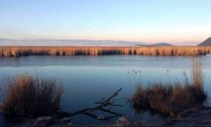 Μοναδικές εικόνες από τα Ιωάννινα: Πάγωσαν τμήματα στην επιφάνεια της Παμβώτιδας