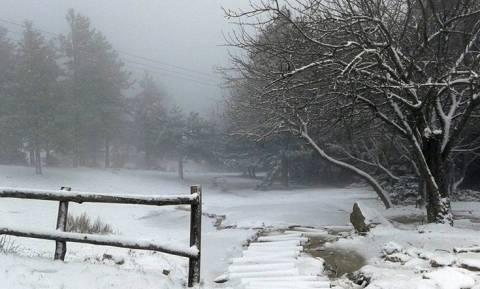 Καιρός: Προσοχή! - Η Γενική Γραμματεία Πολιτικής Προστασίας προειδοποιεί για χιόνια στην Αθήνα