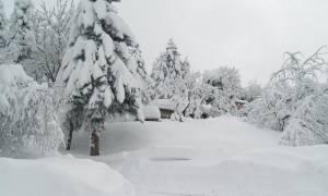 Καιρός: «Βουτιά» του υδράργυρου την Τετάρτη (28/12) - Σφοδρές χιονοπτώσεις και παγετός
