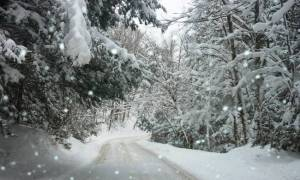 Καιρός: Ξεκίνησε η επέλαση του χιονιά - Ραγδαία επιδείνωση τις επόμενες ώρες