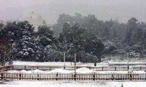 Καιρός: Αρχίζει το σφοδρό κύμα κακοκαιρίας - Πού θα σημειωθούν χιονοπτώσεις (pics)