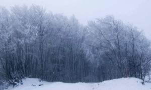 Καιρός: Χιονόπτωση αναμένεται στη νοτιοανατολική Θεσσαλία - Σε ετοιμότητα οι υπηρεσίες