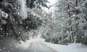 Χιόνια στην Αθήνα: Πού θα χτυπήσει η μετεωρολογική βόμβα το απόγευμα της Πέμπτης 29/12/2017