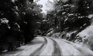 Καιρός - Live: Χιονοθύελλα σε περιοχές της Μαγνησίας - Που χρειάζονται αλυσίδες