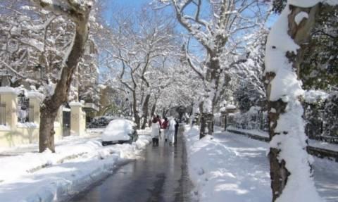 Δήμος Κηφισιάς: Διανομή αλατιού σε πολίτες – Σημεία διάθεσης