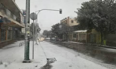 Χιόνια στην Αθήνα: Χιονοθύελλα στη Λυκόβρυση - Το «έστρωσε» μέσα σε λίγα λεπτά