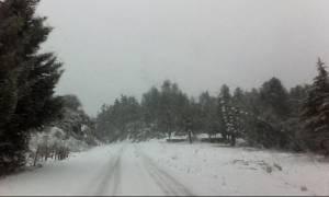 Καιρός Live: Εγκλωβίστηκε οικογένεια στα χιόνια