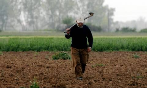 Ο υπολογισμός της μηνιαίας ασφαλιστικής εισφοράς των αγροτών