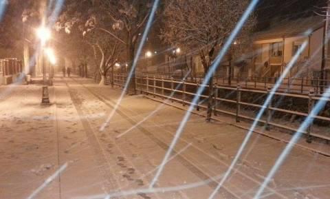 Καιρός LIVE: Χιονίζει στη Φλώρινα – Η «Αριάδνη» κύκλωσε Μακεδονία και Ήπειρο (vid)