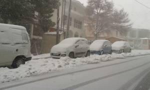 Καιρός: Ο αντικυκλώνας «Αριάδνη» σαρώνει την Ελλάδα – Πολικές θερμοκρασίες και σφοδρές χιονοπτώσεις