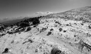 Κακοκαιρία LIVE: Συναγερμός στην Κρήτη - Εγκλωβίστηκε οδηγός