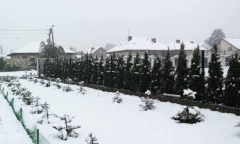 Κακοκαιρία: Τρεις νεκροί από το κρύο στην Πράγα