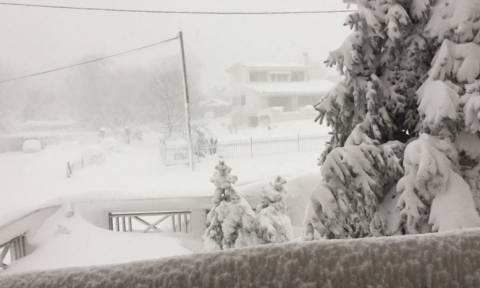 Καιρός ΤΩΡΑ: Δραματική κατάσταση στην Εύβοια - Χωρίς νερό και ρεύμα το νησί (vid + pics)