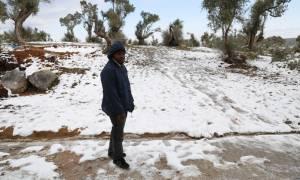 Άνοιγμα των ξενοδοχείων της Μυτιλήνης για την προστασία των προσφύγων από την κακοκαιρία