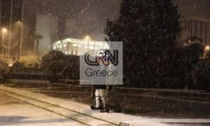 Χιόνια Αθήνα: Καρέ καρέ η αλλαγή της Προεδρικής Φρουράς στο... παγωμένο Σύνταγμα (pics)