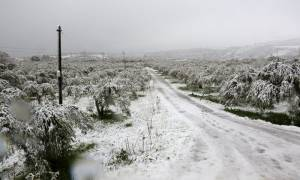 Καιρός: Έντονα προβλήματα στα νησιά του βορείου Αιγαίου λόγω σφοδρής χιονοθύελλας
