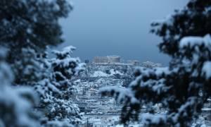 Καιρός LIVE: Ο χιονιάς πάγωσε την Αθήνα - Το έστρωσε παντού - Κλειστοί δρόμοι και σχολεία (pics)