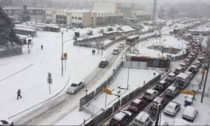 Καιρός Θεσσαλονίκη: Προβλήματα στο οδικό δίκτυο από τον χιονιά - Πού χρειάζονται αλυσίδες