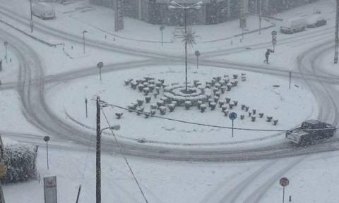 Καιρός: Στο έλεος του χιονιά η Φθιώτιδα - Δεν θα πιστεύετε πώς κινούνται στη Λαμία (vids+pics)