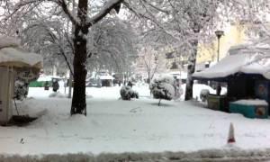 Καιρός: Ποια σχολεία θα κλείσουν στο νομό Καρδίτσας