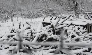 Καιρός: Νέες σφοδρές χιονοπτώσεις σε Ιωάννινα και Άρτα- Κλειστά τα σχολεία την Τρίτη