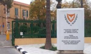 «Χοντρό» λάθος από το Υπ. Γεωργίας Κύπρου - Έστειλε επιστολή στη Βόρεια Κορέα αντί στη Νότια Κορέα