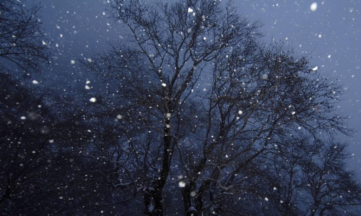 Καιρός - Μετεωρολόγος προειδοποιεί: Έρχεται νέος χιονιάς από την Πέμπτη