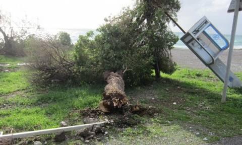 Καιρός: Υδροστρόβιλος προκάλεσε ζημιές στη Ρόδο