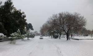 Καιρός: Χιόνια σε Αθήνα και Θεσσαλονίκη - Έκτακτο δελτίο από την ΕΜΥ - Πού θα το «στρώσει» (vids)