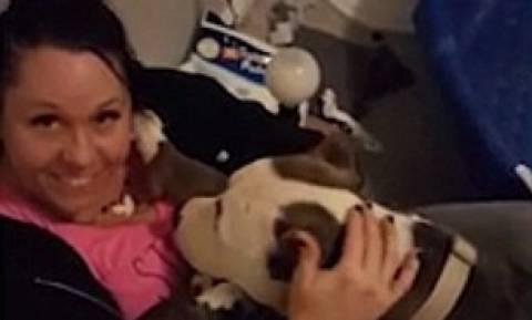 Συγκινητικό: Σκυλίτσα ευγνωμονεί τη σωτήρα της και σε αντάλλαγμα της προσφέρει τα κουτάβια της (vid)