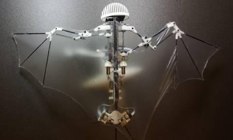 Δημιουργήθηκε το πρώτο ρομπότ-νυχτερίδα με πολυπλοκότητα κινήσεων στον αέρα (Pic+Vid)