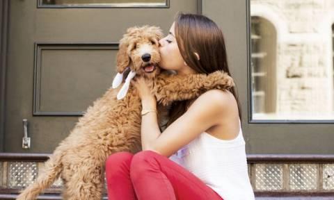 Έχετε σκεφτεί ποτέ ότι εσείς και ο σκύλος σας έχετε την ίδια… προσωπικότητα;