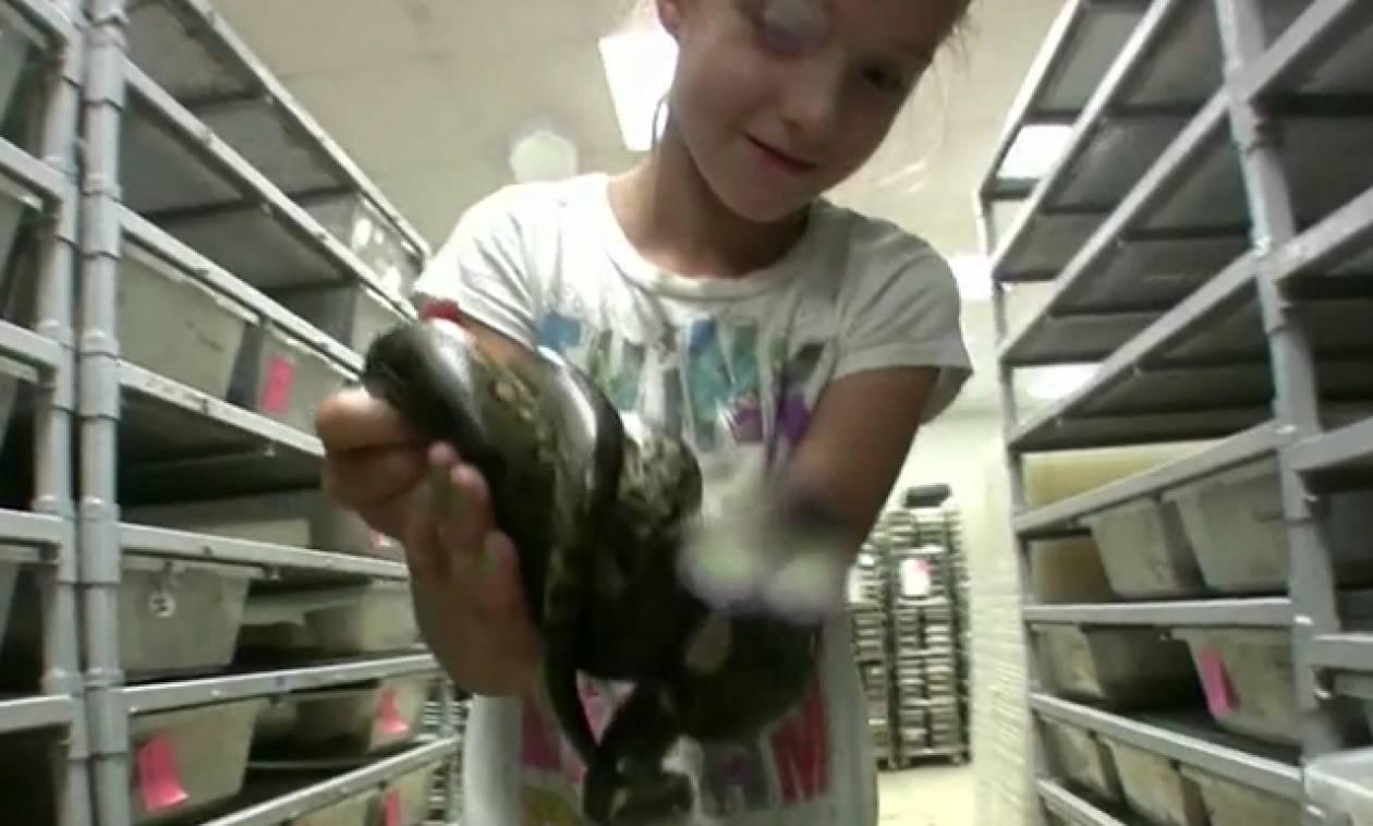 Αυτό το 9χρονο κορίτσι δεν παίζει με κούκλες, αλλά με... φίδια (video)