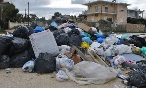 «Βουλιάζει» στα σκουπίδια η Ζάκυνθος – Κραυγή αγωνίας των κατοίκων: Δεν αντέχουμε άλλο! (vids+pics)