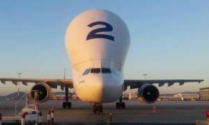 Στο «Ελευθέριος Βενιζέλος» το τεράστιο Beluga Airbus (Photos)