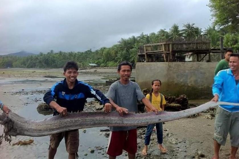 Τρόμος: Μυστηριώδες γιγάντιο ψάρι που ξεβράστηκε στην ακτή προμηνύει μεγάλο σεισμό! (pics)