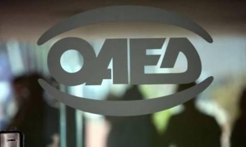 ΟΑΕΔ: Δύο νέα Προγράμματα για 15.000 θέσεις πλήρους απασχόλησης
