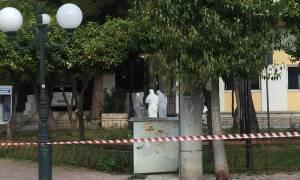 Συναγερμός στην Αντιτρομοκρατική για την επίθεση στη Δάφνη (pics&vids)