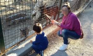 Ράγισαν και οι πέτρες: Στο ίδιο φέρετρο η μητέρα και το 3χρονο αγγελούδι της