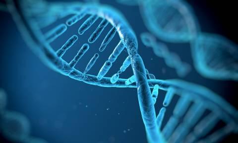 Η επόμενη πρόκληση: Βιολόγοι έτοιμοι να «διαβάσουν» το DNA όλης της ζωής πάνω στη Γη