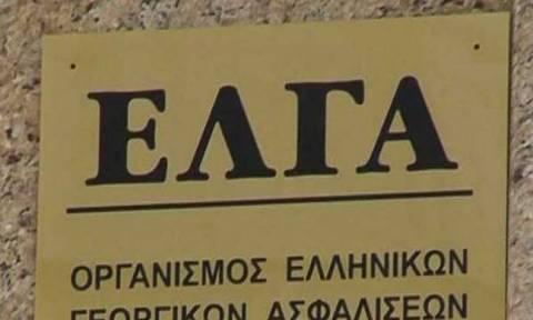 ΕΛΓΑ: Έρχονται αποζημιώσεις σε 7.379 αγρότες ύψους 11,8 εκατ. ευρώ