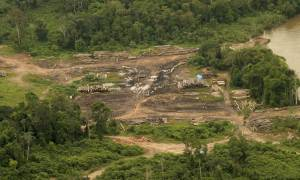 Βραζιλία: Νέα βάση δεδομένων στη μάχη ενάντια της παράνομης υλοτόμησης του Αμαζονίου