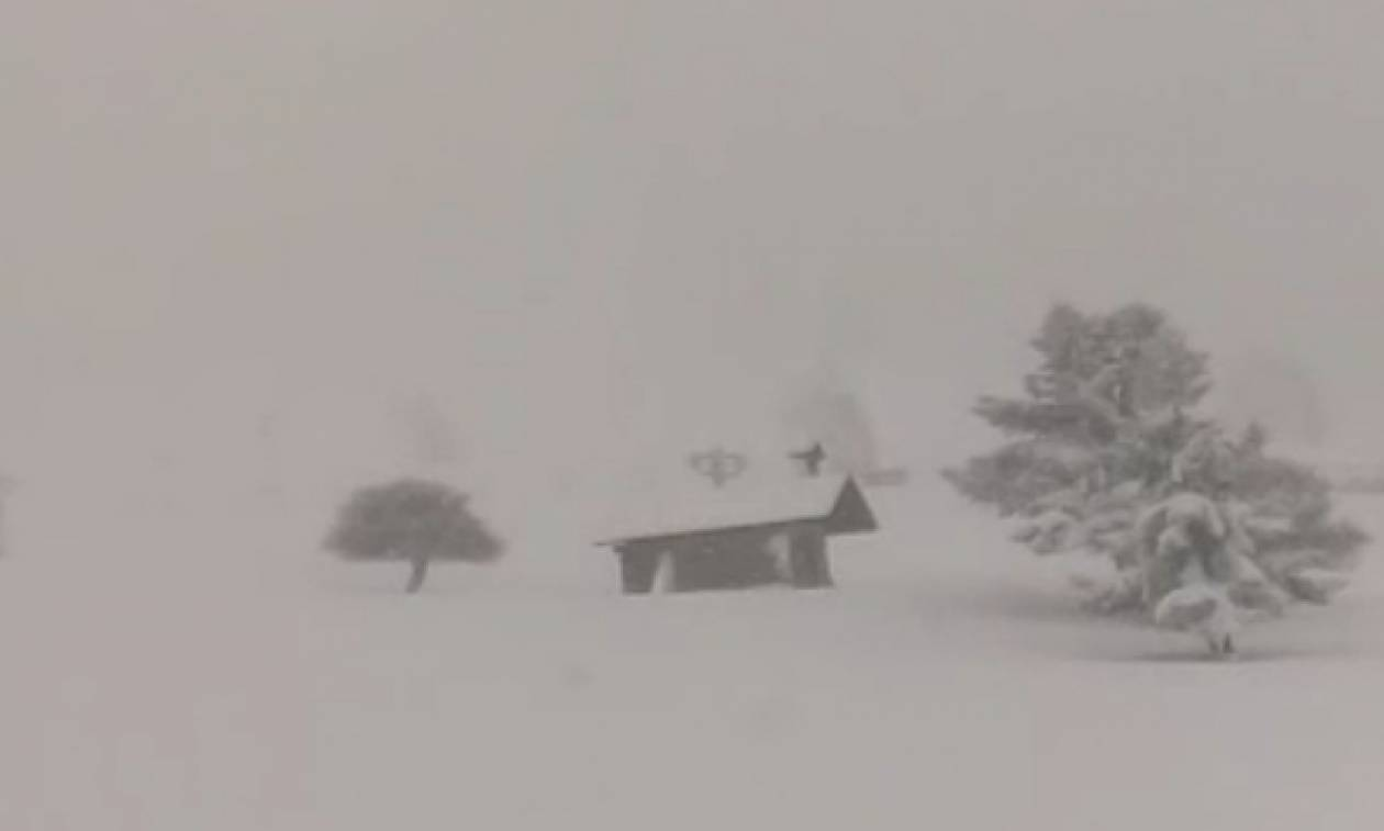 Ζωντανή εικόνα: Πυκνή χιονόπτωση τώρα στο χιονοδρομικό στα Καλάβρυτα (video)